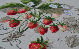 Парижские вышивальщицы: схема для вышивки Земляника