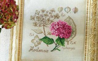 DFEA Ботаника: схема для вышивки крестом Гортензия