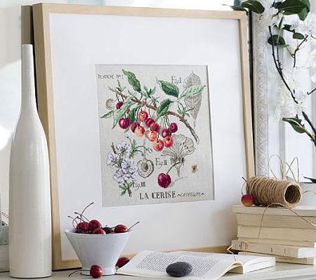 dfea ботанические этюды
