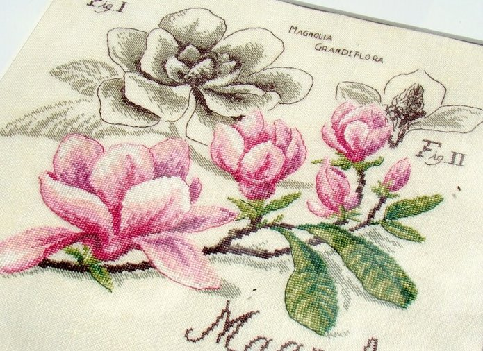 Схема вышивки Dfea: Magnolia