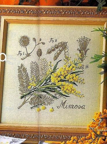 Схема вышивки Dfea: Mimosa