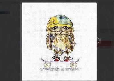 Схема вышивки RTO: Skater